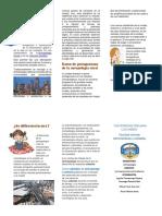Antropología Urbana la rata.docx bien.docx