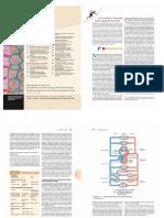 Cardio Impressão.pdf
