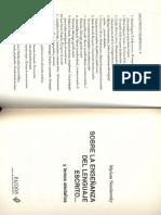 228393089-Sobre-La-Ensenanza-Del-Lenguaje-M-Nemirovsky.pdf