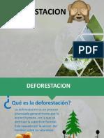EXPO_DEFORESTACION[1].pptx
