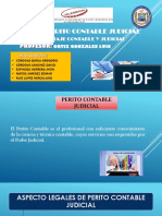 Exp.perito Contable Judicial Ppt