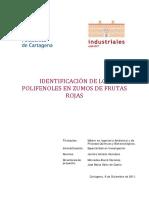 POLIFENOLES HPLC.pdf