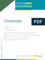 lecciones_aprendidas.pdf