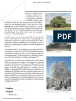 Árbol.pdf
