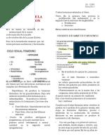 1.-_fisio de La Fecundacion