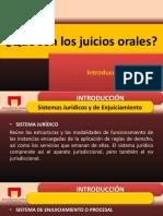 59164910-01-JUICIOS-ORALES.pdf