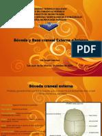 Bc3b3veda y Base Craneal Externa e Interna