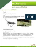 Beneficial Organisms 1