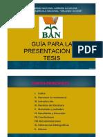 Guia Redaccion Tesis APA
