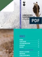 SPANISH WWF ClimateSpecies Report Repro