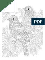 mandala pájaros.docx