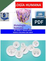 Sesión I- Histología