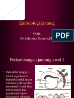 167304108-dr-sulaiman-embriologi-jantung.ppt