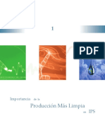 capitulo 1. Importancia de la Producción mas limpia en IPS.pdf