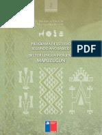 PROGRAMA DE ESTUDIO SEGUNDO AÑO BASICO LENGUA INDIGENA.pdf