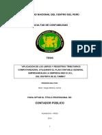 Aplicación de Los Libros y Registros Tributarios Computarizados