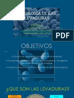 Fisiologia de Las Levaduras