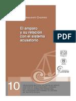 El Amparo y Su Relacion Con El Nuevo Sist.penal Acusatorio.