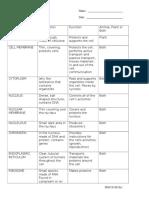 Cell Organelles Worksheet
