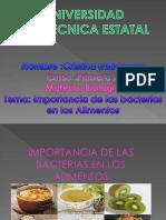Cristina Imbacuan Presentacion Importancia de Las Bacterias Primer a Bacterias