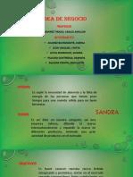 idea-de-negocio-TEMAS.pptx