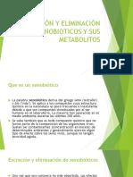 EXCRECIÓN Y ELIMINACIÓN DE XENOBIOTICOS Y SUS METABOLITOS expocicion.pptx