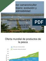 Presentacion-ICA-50-anos-Nicolas-del-Castillo.pdf
