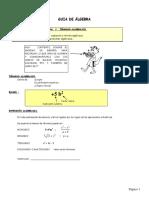 GUIA Algebra 1