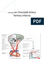 Ppt Arteri Choroidal Anterior