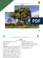 chis4.pdf