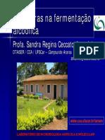 4 6 Leveduras aula.pdf
