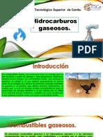 UNIDAD II combustibles gaseosos.pdf