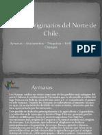 R_Pueblos_originarios_del_Norte_de_Chile_4.ppsx