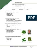 PRUEBA_SUMATIVA_CIENCIAS_2BASICO_MARZO_2012.docx