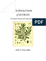 The Evolution of the Olive