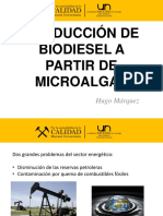 Biodiesel a Partir de Microalgas