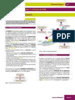 Manual AMIR Hematologia 6ed_booksmedicos.org-59-73