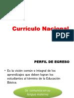 Curriculo Nacional 2017ppt