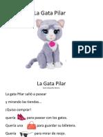 Gata Pilar.pptx