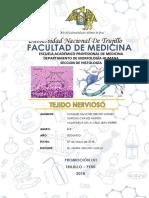 Informe 7 TEJIDO NERVIOSO. Imprimir Original