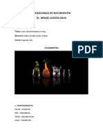 Temperamentos-Colores-funciones-Terapias de los 4 ELEMENTOS.docx