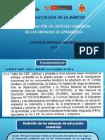 EXPOSICION-ENFOQUE-AMBIENTAL.pptx