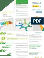 Anexo Infografia Capital Natural y Economia Circular