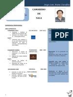 CV Arana Zavaleta, Jorge Luis [10876]