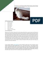 Klasifikasi Kucing.docx