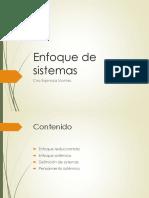 6.Enfoque de sistemas.pptx