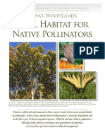 Iowa Woodlands Vital Habitat for Native Pollinators