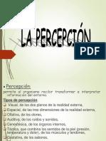 FATIGA_BIMECANICA_GERARDO SEDAMANO-1.ppt