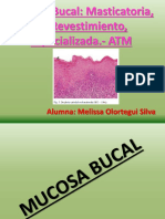 Mucosa Bucal.pptx