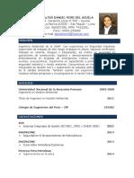 CV-DANIEL_MORI.docx